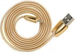 Кабель WK ChanYi Lightning Data Cable Gold (WKC-005)